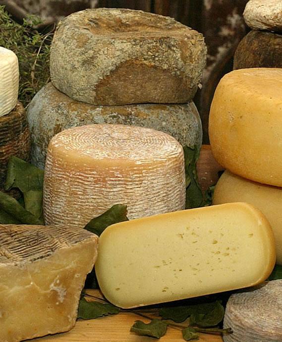 Die Gäste verkosten lactosefreien Käse und Milchprodukte in Kombination mit Rohmilchkäsen und erhalten dazu fachlich kompetente Informationen.